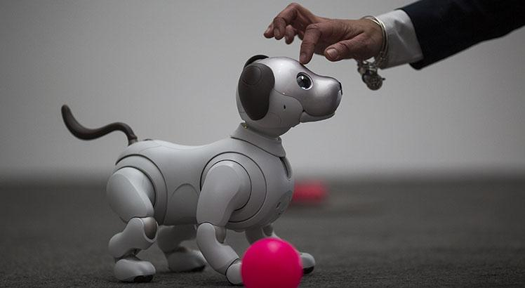 Aibo, o cão-robô da Sony (AFP PHOTO / DAVID MCNEW)
